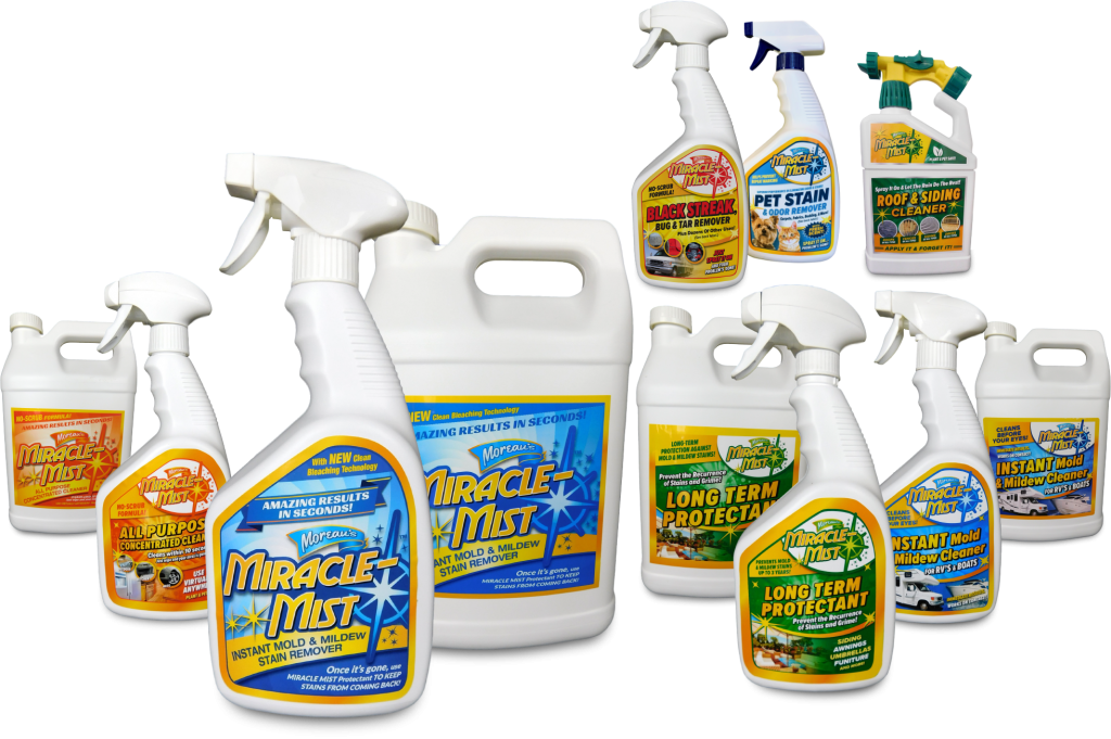 mold and mildew stain remover products