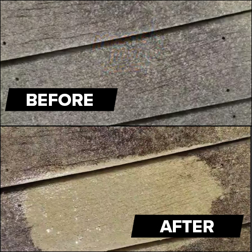 Roof and Siding Cleaner | MIracle Mist Demo