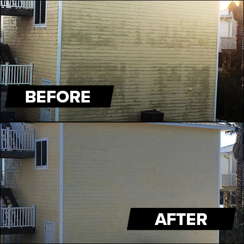 Roof & Siding Cleaner Before and After