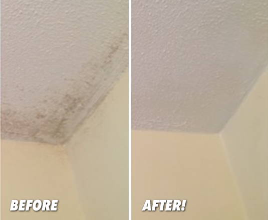 ceiling before and after Miracle Mist