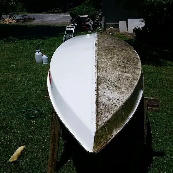 boat mold and mildew removal