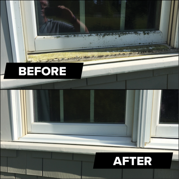 remove mold and mildew stains from window seal