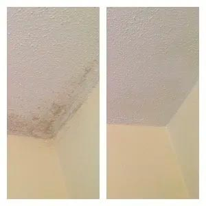 miracle mist instantly cleaned bathroom ceiling